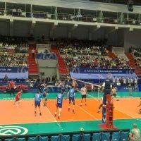 На волейболе :: Митя Дмитрий Митя