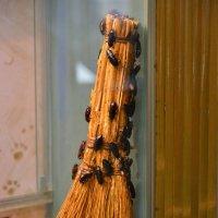 Кубинские тараканы :: Константин Анисимов