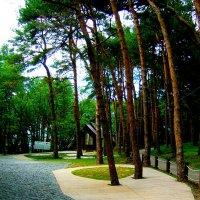 Уютный  домик  в парке :: Евгений БРИГ и невич