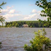 На озере :: Вадим Басов