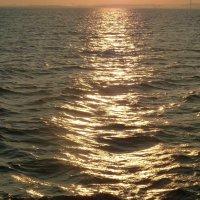 солнечный путь. :: веселов михаил