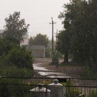 Дождь :: Ирина