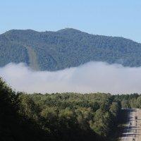 Туман на Дерсу :: Владимир БОДАГОВ