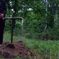 Похороны в лесу :: Данила Колосов