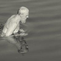 Плавающий в августе :: Елена Минина