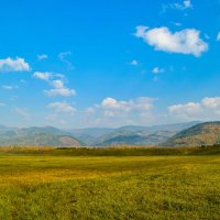 золотая осень в Тункинской долине :: Vladimir Egoshin