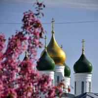 Купола Успенского кафедрального собора :: Кирилл Иосипенко