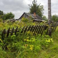 В поселке Белое озеро :: Владимир Шибинский
