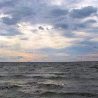 На Балтике :: Самохвалова Зинаида