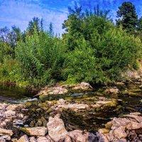 Пересохшая река... :: Владимир Деньгуб