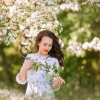 Яблони в цвету :: Марина Парахина