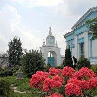 Бобренев мужской монастырь :: Кирилл Иосипенко