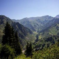Тропа туриста :: Светлана SvetNika17