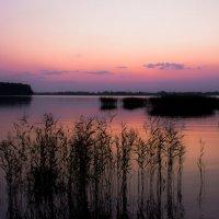 Закат августа... :: Вадим Басов