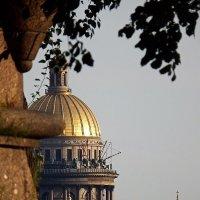 Вид на Исаакиевский собор с пляжа Петропавловской крепости :: Ольга И