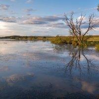 Вечерком на озере после дождя ... :: Евгений Хвальчев
