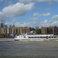 Кипит жизнь на главной водной артерии Лондона... :: Тамара Бедай