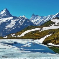 конец июня в Альпах, Bachalpsee :: Elena Wymann