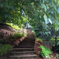 Дорожка в парке :: Julia Nikolina