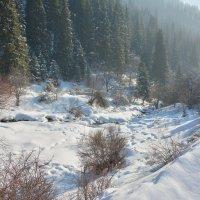 Зимний пейзаж в горах :: Горный турист Иван Иванов