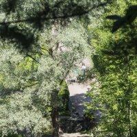 Парк, полдень :: Александр Петров