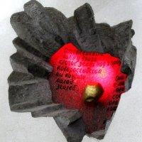 капсула сердца :: ольга хакимова