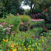 Райский уголок сада. :: Люба
