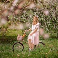 яблоневые сады :: Марина Парахина