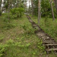 Каменная лестница :: Андрей Резюкин