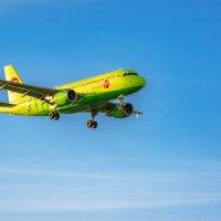 AIRBUS A319 (YP-BHI) :: Володька Завитушкин