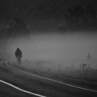 Одинокий всадник :: Валерий Иванович