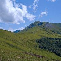 Гора (вершина): Пастухова :: Леонид Сергиенко