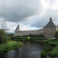 Вид на крепость Старая Ладога :: Татьяна Гусева