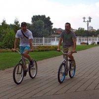 В Краснодаре широко развито велодвижение :: Татьяна Смоляниченко