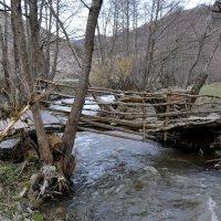 мостик :: Осень