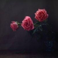 С ароматом роз :: Natali K