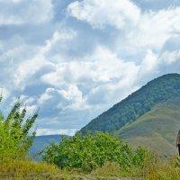 В Жигулевских горах :: Raduzka (Надежда Веркина)