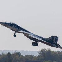 Су-57 :: Денис Перов