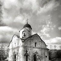 . :: Любовь Миргородская