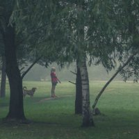 Туман упал на город- бегом снимать..* :: Виктор Грузнов