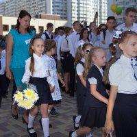 Кто ты,моя первая учительница? :: Андрей Фиронов