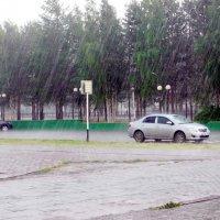 Просто летний дождь пошел :: Наталья Пендюк Пендюк