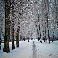 Весенний снег :: Василий
