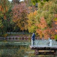 осень ,ВДНХ. :: Любовь Миргородская