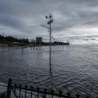Амур затопил новую набережную. :: Виктор Иванович