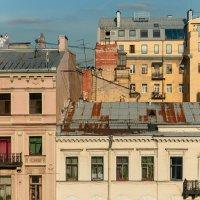 Крыши, окна. Санкт-Петербург :: Владимир Засимов