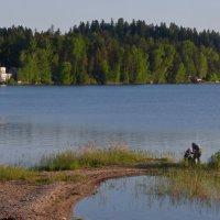 На озере :: Елена Суханова