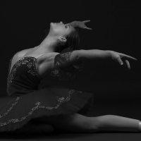 Black swan :: Сергей Быковский