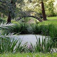 В Ботаническом саду :: Ольга И