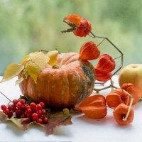 Рыжая осень :: Лидия Суюрова